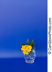 Glass With Flowers On Blue Background