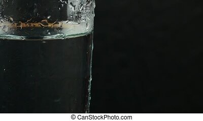 Glass with water on a black background