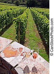 Glasses of red and white wine and vineyard