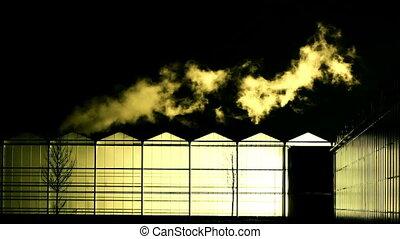 glasshouse at night
