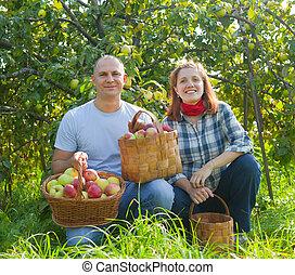 glatt par, trädgård