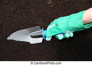 gleba, przygotowując, dosadzenie