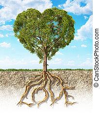 gleba, serce, drzewo, pokaz, mający kształt, tekst, puszysty...