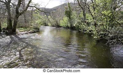 Glen Luss river Scotland uk clear water feeding into Loch...