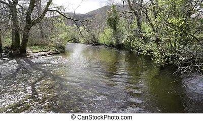 Glen Luss river Scotland uk clear water feeding into Loch...