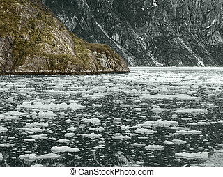 gletsjer baai nationaal park, alaska,