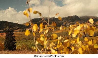 glijbaan, bevestigingslijst, grit, van, gele aspen bomen, en, bergen, in, herfst