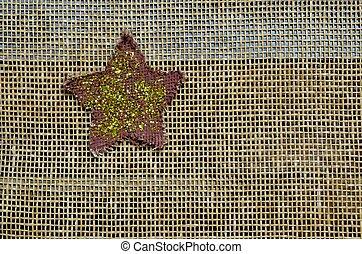 Glittering star on mesh background