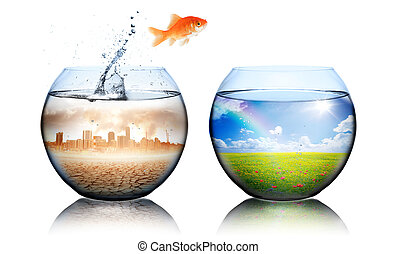 Global Warming Concept - goldfish jump from pollution to ...