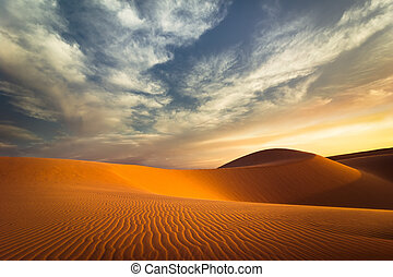 Global warming concept. Lonely sand dunes at sunset desert