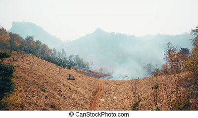 Global warming crisis. Slash and burn agriculture. Climate ...