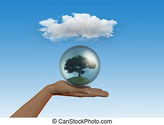 globe, arbre, tenue, main femelle