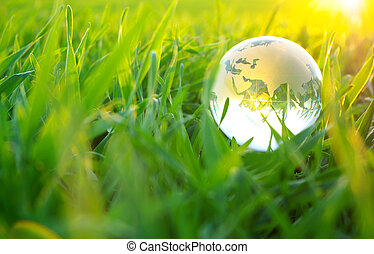 globe in grass - Earth globe in the grass