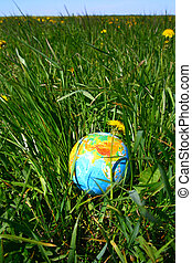 globe in grass - globe of planet earth in green grass