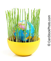 Globe in green wheat germ, ecological composition.