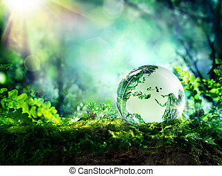 globe, mousse, -, europe, forêt