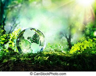 globe, mousse, forêt cristal