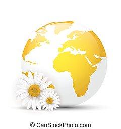 globe, pâquerettes, jaune