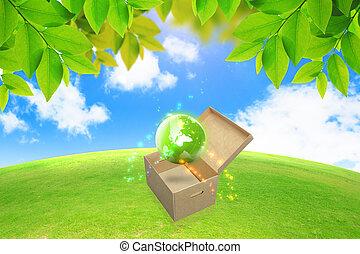 globe vert, dans, box.green, énergie, concept