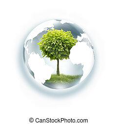 globo, árvore, dentro
