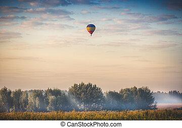 globo del aire caliente, el volar encima, bosque, en, mañana temprana