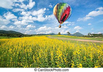 globo del aire caliente, encima, flor amarilla, campos, contra, cielo azul