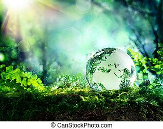 globo, musgo, -, europa, bosque
