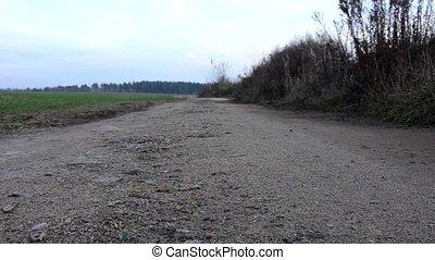Gloomy gravel road