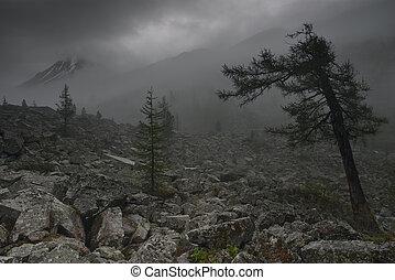 Gloomy valley