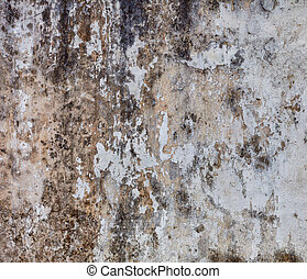 Gloomy wall with mold