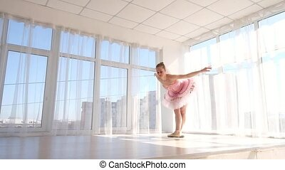 Glorious female ballet dancer in pink tutu practicing and...