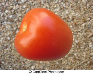 Red Roma Tomato