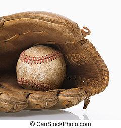glove., honkbal