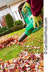 gloved, photo, vertical, maison, feuilles, tenue, ventilateur, électrique, nettoyage, fond, mains, jardin