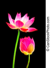 Glow image of lotus flower