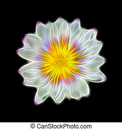 Glow image of waterlily flower.