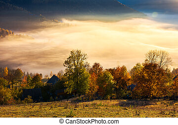 glowing fog in the rural valley. beautiful autumn scenery in...