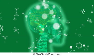 Glowing green human head x-ray with molecular structures on ...