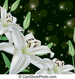 Glowing greeting or invitation card with white lily