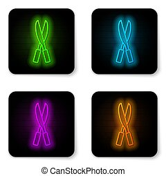 Glowing neon line Gardening handmade scissors for trimming icon isolated on white background. Pruning shears with wooden handles. Black square button. Vector
