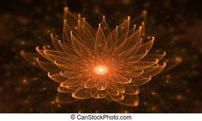 Glowing Orange Lotus, Water Lily