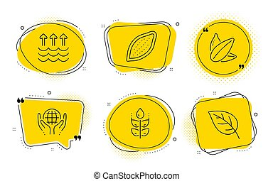 Gluten free, Cocoa nut and Sunflower seed icons set. Organic...