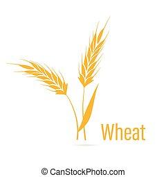 Gluten free icon. Ears of Wheat.