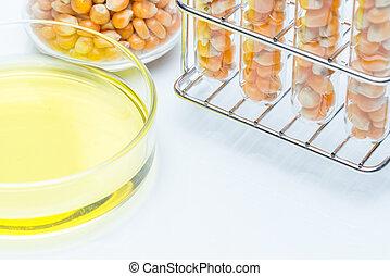 gmo, biofuel, トウモロコシ, 研究所, エネルギー