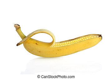 GMO corn - genetically modified banana and maize