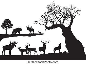 gnarled, árvore, com, fauna, isolado