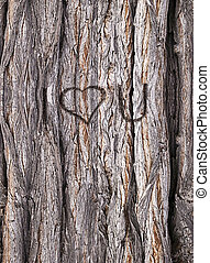 Gnarled trunk, HD seamless texture with I love you engraved