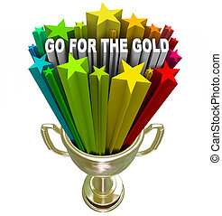 Go for the Gold Trophy Positive Attitude and Ambition - The...