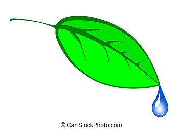 Go Green leaf with water droplett