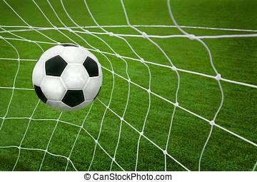 Goal. a soccer ball in the net.
